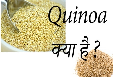 Quinoa meaning in Hindi